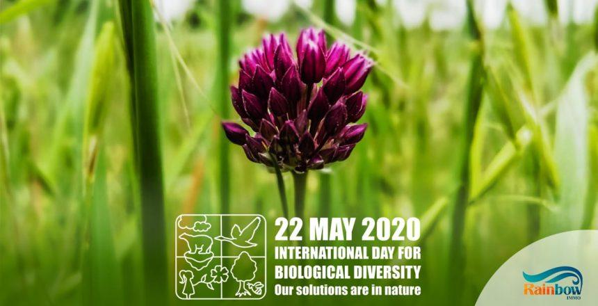 Internationaler Tag der biologische Vielfalt 2020